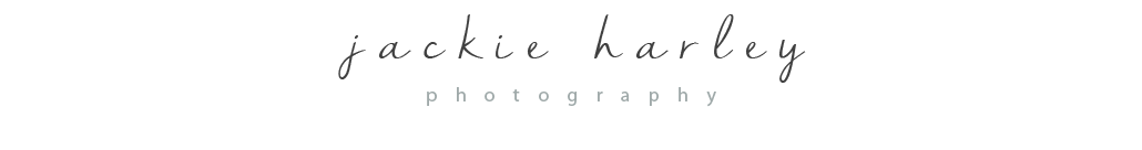 Metro Detroit | High school senior and portrait photographer logo